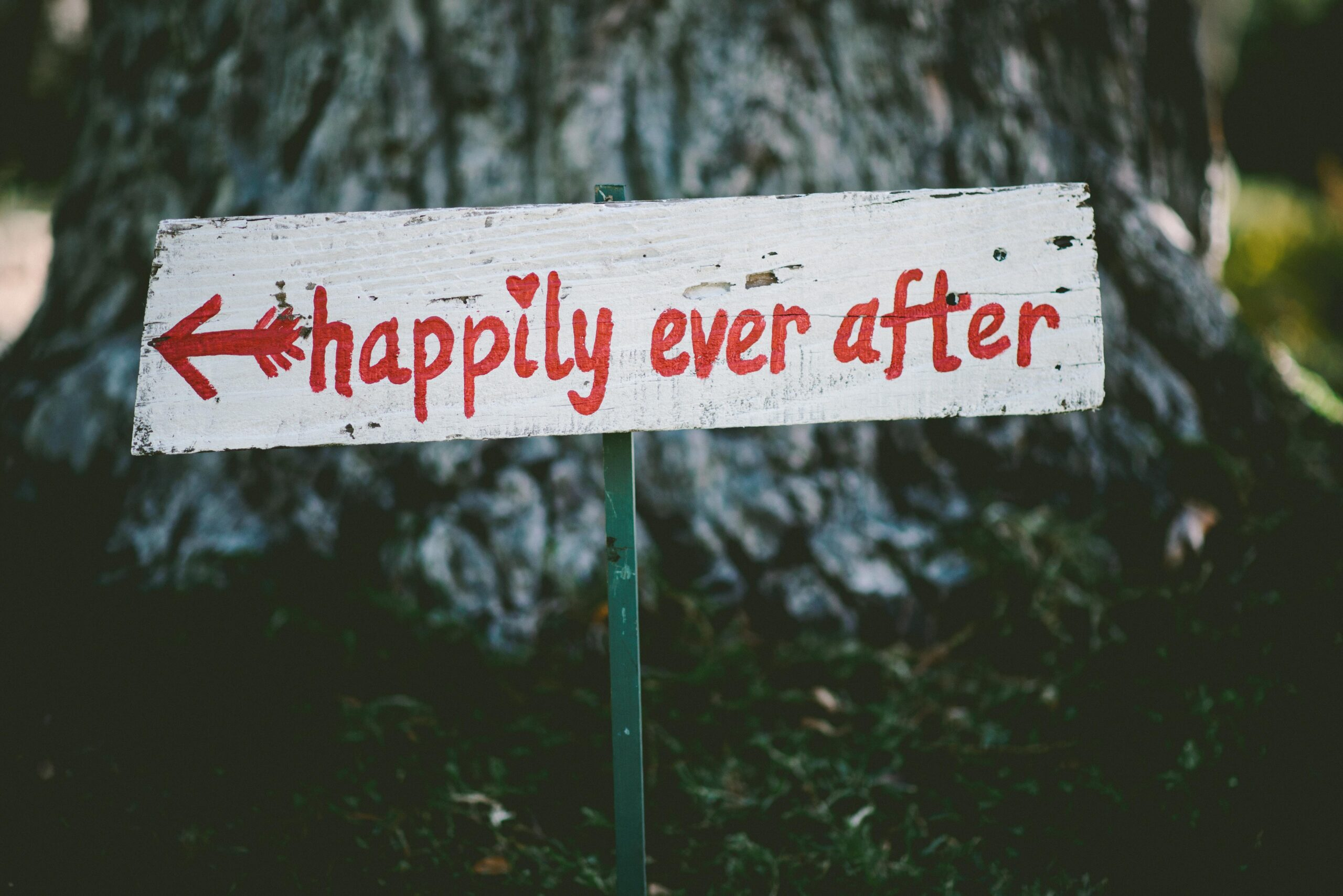 marriage is the hardest ministry you will ever serve in - happily ever after is possible if you let marriage change you