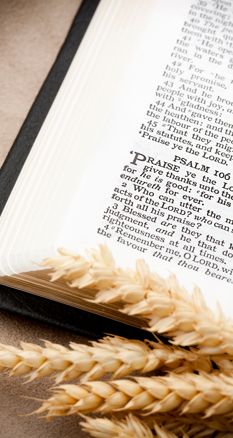 10 Bible Verses For a Thankful Heart This Thanksgiving